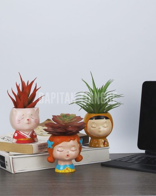 Dapitan Tiangge Adorable Dolls Mini Succulent Plant Pots Home Decor